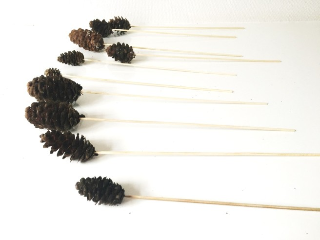 Pine cone with sticks