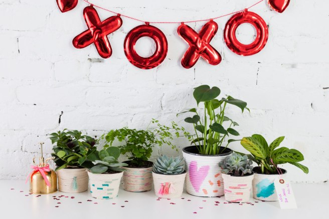 DIY-Plant in Upcycled Can