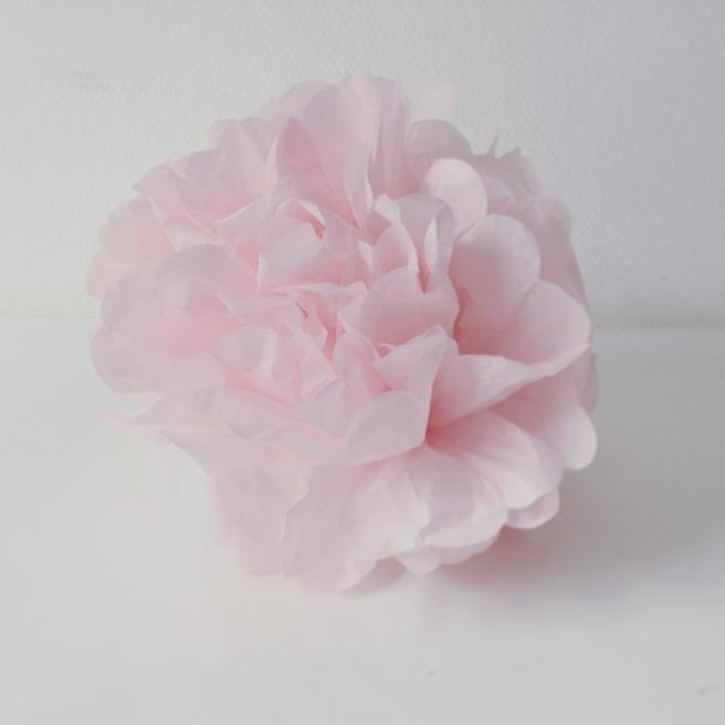 rose pink pom pom