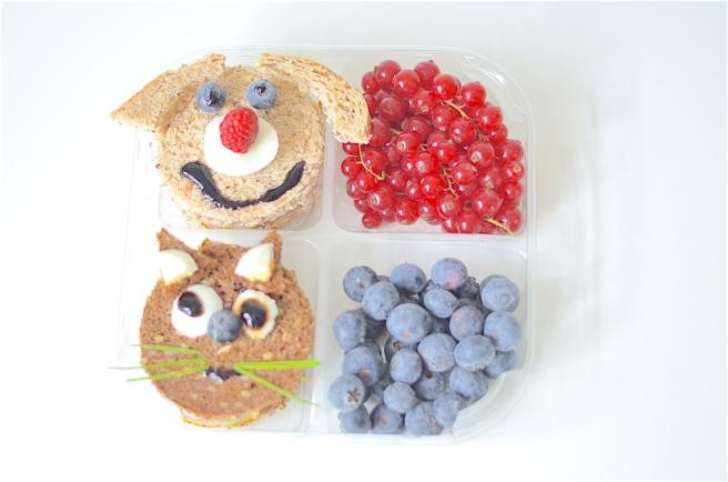 animals-lunchbox