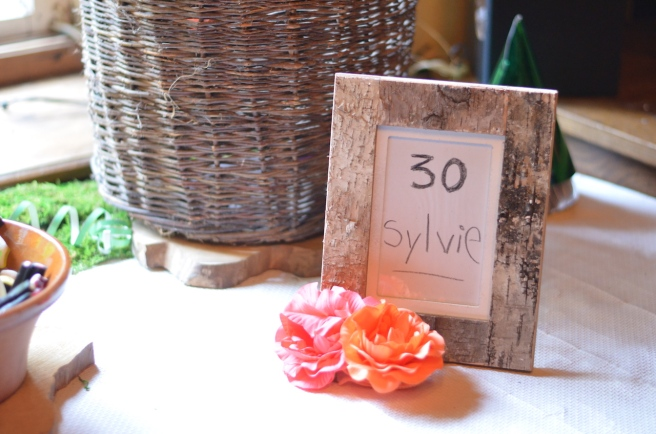 rustic-party-13