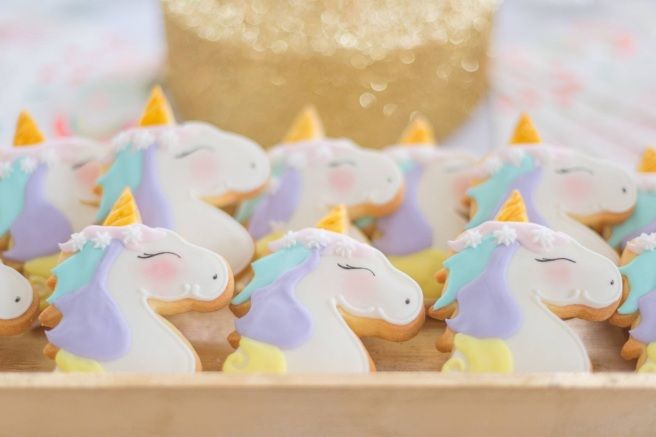 Unicorn Party 19